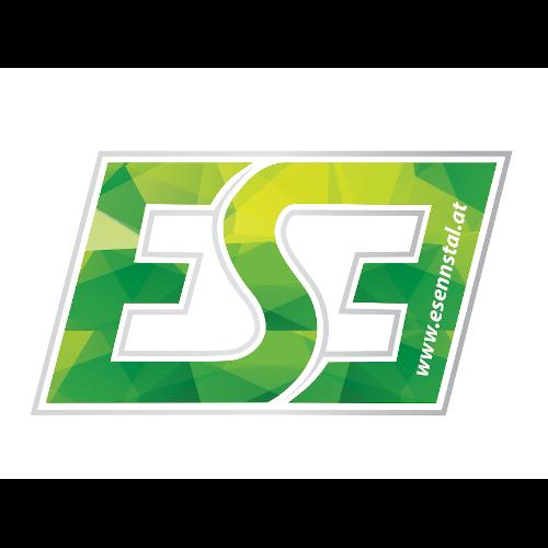 ESE - E-Sports-Ennstal